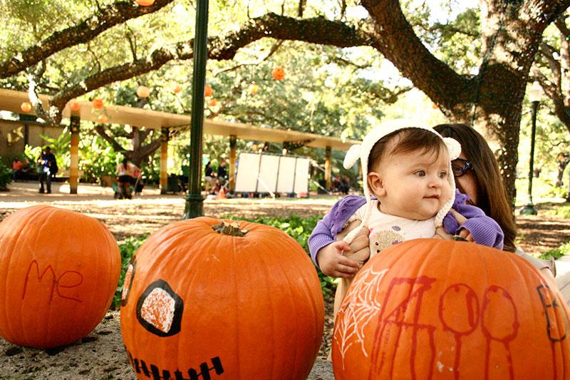 Leo_pumpkins